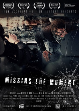 Missing the moment (2012)